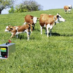 draagbox verzinkt voor PATURAapparaten